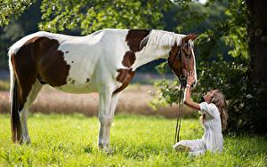 Fotos Pferde Sitzend Lächeln Gras Marion and Epalino Mädchens Tiere