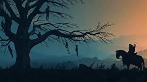 Hintergrundbilder Hauspferd The Witcher 3: Wild Hunt Abend Bäume Silhouette Ast Spiele