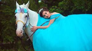 Bilder Hauspferd Einhorn Kleid Tiere Mädchens