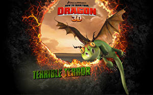Photo How to Train Your Dragon Dragons