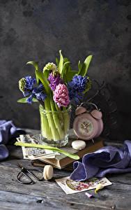Fotos Hyazinthen Stillleben Wecker Bretter Macarons Blüte