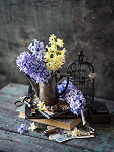 Image Hyacinths Boards Vase Books flower