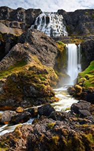 Bilder Island Gebirge Steine Wasserfall Fluss Felsen Dynjandi waterfalls