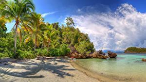 Hintergrundbilder Indonesien Tropen Küste Palmengewächse Strauch Wolke Strand Lelintah West Papua Natur