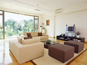 Picture Interior Design Living room Sofa