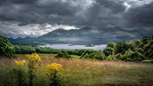 Bilder Irland Berg See Gewitterwolke Bäume Killarney, Kerry