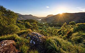 Bilder Irland Berg Parks Stein Sonne Bäume Lichtstrahl Killarney National Park