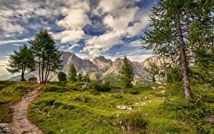 Fotos Italien Gebirge Wolke Bäume Alpen HDR Weg Falzarego, Dolomites