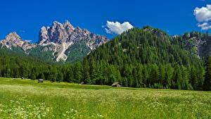 Hintergrundbilder Italien Berg Grünland Alpen Bäume Trentino-Alto Adige Natur