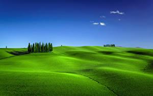 Fotos Italien Toskana Himmel Grünland Hügel Bäume Torrenieri