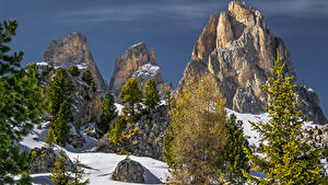 Image Italy Winter Alps Cliff Spruce Snow Canazei Trentino Nature
