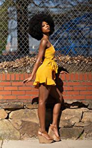 Bilder Kleid Bein Pose Neger Starren Janae Fulton junge Frauen