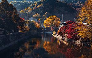Fotos Japan Kyōto Herbst Gebirge Kanal Bäume Arashiyama