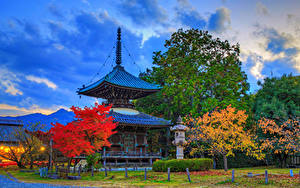 Bilder Japan Kyōto Parks Pagoden Herbst HDRI Bäume Lichtstrahl Seiryo-ji Natur