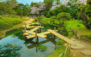 Fotos Japan Park Teich Brücken Kakteen Bäume HDRI Okayama Korakuen Garden