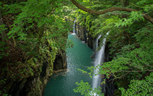 Wallpapers Japan Rivers Waterfalls Rock Branches Takachiho Gorge
