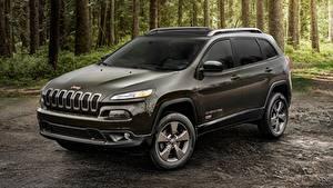 Bilder Jeep Graues Cherokee, 75th Anniversary, 2016 Autos
