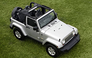 Photo Jeep SUV From above Silver color Grass  automobile