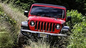 Bilder Jeep Sport Utility Vehicle Rot Vorne Strauch Wrangler, Rubicon EU-spec, 2018 Autos