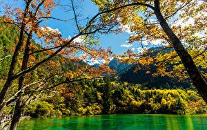Sfondi desktop Valle del Jiuzhaigou Cina Autunno Parco Foresta Lago Natura