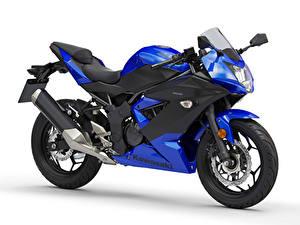 Fotos Kawasaki Blau Weißer hintergrund Ninja 125, EU-spec, 2018 -- Motorrad