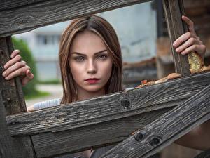 Hintergrundbilder Gesicht Bretter Starren Klaudia Latto junge Frauen