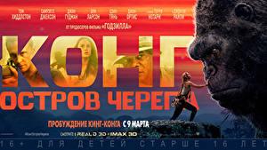 Fotos Kong: Skull Island Affen Russische Film