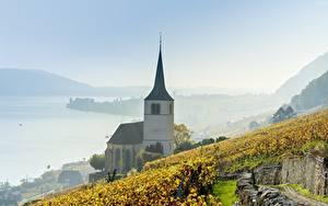 Images Lake Vineyard Church Switzerland Fog Lake Biel Nature