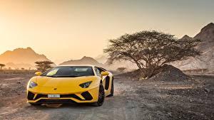 Fotos Lamborghini Vorne Gelb 2018 Aventador S Autos