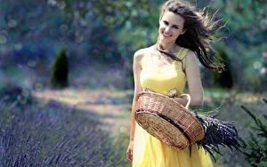 Bilder Lavendel Weidenkorb Kleid Lächeln Windig junge frau