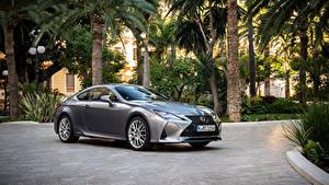 Fondos de Pantalla Lexus Gris Metálico 2018-19 RC 300h Worldwide automóvil