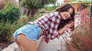 Hintergrundbilder Braunhaarige Starren Strauch Pose Hand Hemd Shorts Gesäß Lika Dolce Mädchens