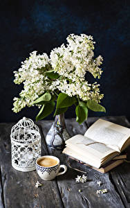 Wallpapers Syringa Still-life Coffee Cappuccino Boards Vase Book Cup Flowers