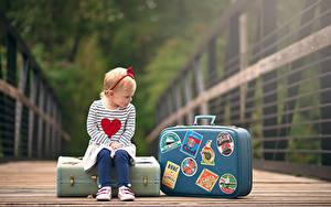 Desktop hintergrundbilder Kleine Mädchen Koffer Sitzend Bokeh Kinder