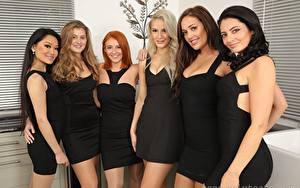 Hintergrundbilder Louisa Lu Becky Bond Lucy Ava Hollie Q Robyn J Paige F Only Brünette Blondine Rotschopf Dunkelbraun Starren Lächeln Kleid junge frau