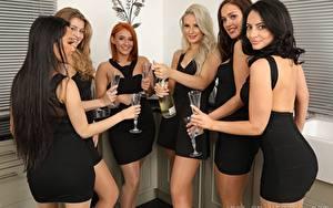 Fotos Louisa Lu Becky Bond Lucy Ava Hollie Q Robyn J Paige F Only Brünette Rotschopf Blondine Starren Lächeln Hand Weinglas Kleid junge frau