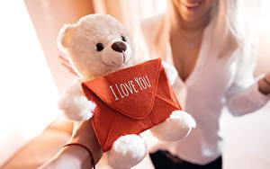Hintergrundbilder Liebe Knuddelbär Spielzeug Valentinstag Englisch Unscharfer Hintergrund