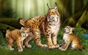 Bilder Luchse Jungtiere Große Katze Malerei