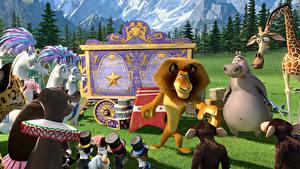 Hintergrundbilder Madagascar Löwe 3 Animationsfilm