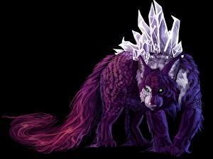 Bilder Magische Tiere Schwarzer Hintergrund Fantasy