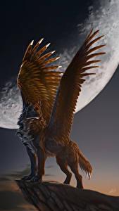 Fotos Magische Tiere Wölfe Flügel Mond Nacht Fantasy