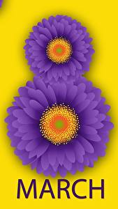 Bilder Internationaler Frauentag Gerbera Englisch Blumen