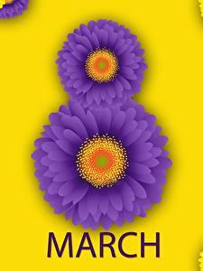 Papéis de parede Dia Internacional da Mulher Gerbera Inglês Flores