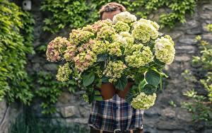 Fotos Mann Blumensträuße Hortensie Unscharfer Hintergrund Blüte