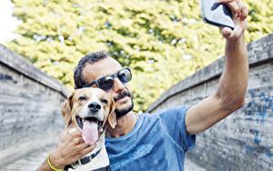 Bilder Mann Hunde Brille Smartphone Retriever Zunge Selfie Beagle ein Tier