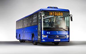 Hintergrundbilder Mercedes-Benz Omnibus Blau Intouro M, 2020