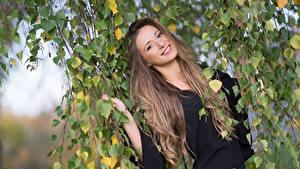 Fotos Ast Blatt Braune Haare Starren Lächeln Haar Merima junge frau