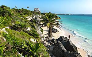 Fotos Mexiko Küste Meer Palmen Felsen Tulum