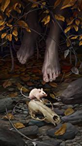Bilder Mäuse Schädel Bein Fantasy