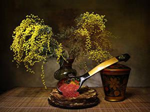 Hintergrundbilder Silber-Akazie Eierkuchen Stillleben Caviar Blumen